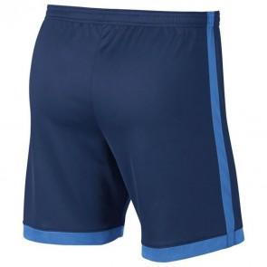 Nike Dri-FIT Academy püksid